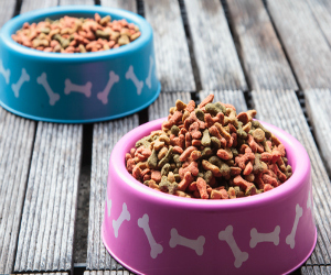 Pet Food from a famer's market